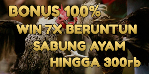 bonus sabung ayam